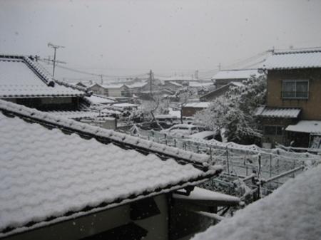 20070202yuki